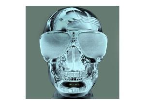Bose Skull_LHS_No 4
