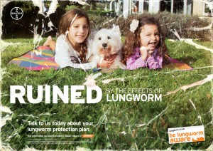 Lungworm Ruined_web