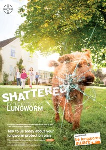 Lungworm Shattered_web