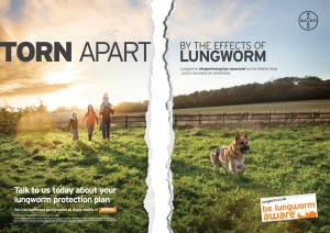 Lungworm Torn DPS_web